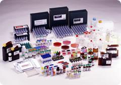 Сыворотки эширихиозные диагностические моноволентные О (для РА- реакции аглютенации)