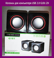 Колонки для компьютера USB 2.0 G101 ZH