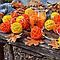 "Гирлянда на батарейках из шариков ротанга ""Осеннее настроение"". Диаметр шарика - 5 см."