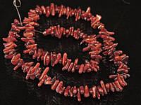 Коралл зубчики,красные без замка