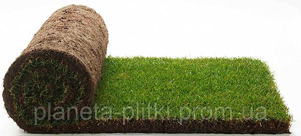 Рулонный газон — куски дернины, нарезанные и скатанные в рулоны