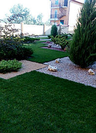 Газонная трава Люксграс Релакс весовой 1 кг