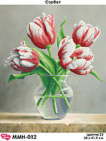 Картина Тюльпаны Сорбет ММН-012