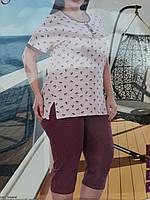 Пижама женская больших размеров  кофта и бриджи