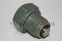 Пробка сливного отверстия масляного поддона двигателя (613 EII, 613 EIII) TATA Motors / MAGNETIC DRAIN PLUG