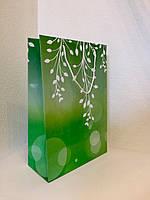 Пакет подарочный бумажный формат А 4 21х31х9 (30-001)