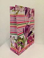 Пакет подарочный бумажный формат А 4 21х31х9 (30-002)