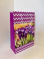 Пакет подарочный бумажный формат А 4 21х31х9 (30-006)