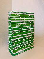 Пакет подарочный бумажный формат А 4 21х31х9 (30-011)