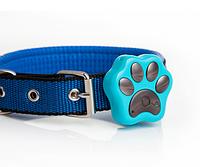 GPS-трекер для кошек и собак MALLOW RF-V30
