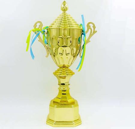 Кубок спортивный с ручками WILL 41см