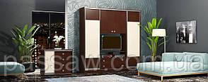 Шкаф-купе для гостиной 2100*450*2400