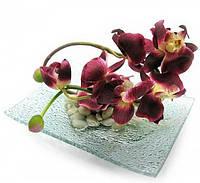 Цветок орхидеи на стеклянной подставке (20х15см) ( 18799)