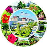 Тарелки с логотипом, фото 3
