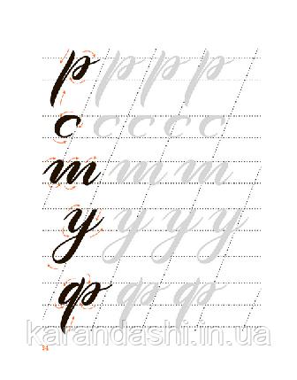 Основы каллиграфии и леттеринга. Прописи. Анна Рольская, фото 2
