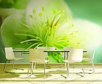 Фотообои на флизелиновой основе для кухни