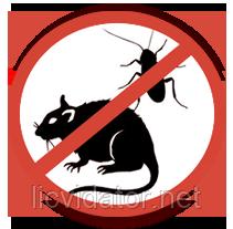 Знищення гризунів на складах в Житомирі та області