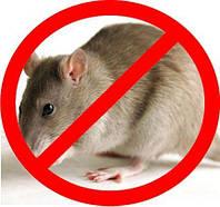 Борьба с мышами на складах в Никополе, фото 1