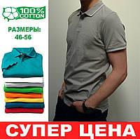 Остались размеры 46,48,50, Мужская тенниска, 100% хлопок, футболка с воротником, поло