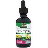 Nature's Answer, Elecampane, 2,000 mg, 2 fl oz (60 ml)