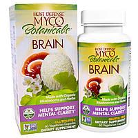 """Fungi Perfecti, """"Грибы и травы для мозга"""" из серии """"Грибы для защиты организма"""", пищевая добавка из грибов и трав для улучшения работы мозга, 60"""