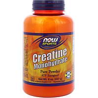 Now Foods, Спортивное питание, моногидрат креатина, чистый порошок, 227 г (8 унций)
