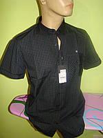 Мужская рубашка тенниска AVVA все размеры Турция