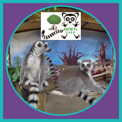 Контактный зоопарк на детские квест рождения на ВДНГ