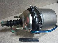 100.3519200 Камера тормозная с пружинным энергоаккумулятором