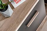Комод дводверний з шухлядами у вітальню графіт/дуб монумент з ДСП 2D4S Legg Furnival, фото 9