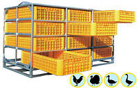 """Ящики для перевозки живой птицы """"Монолитные"""" 1200х800 мм., фото 1"""