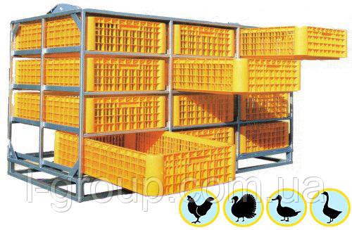 """Ящики для перевозки живой птицы """"Монолитные"""" 1200х800 мм."""