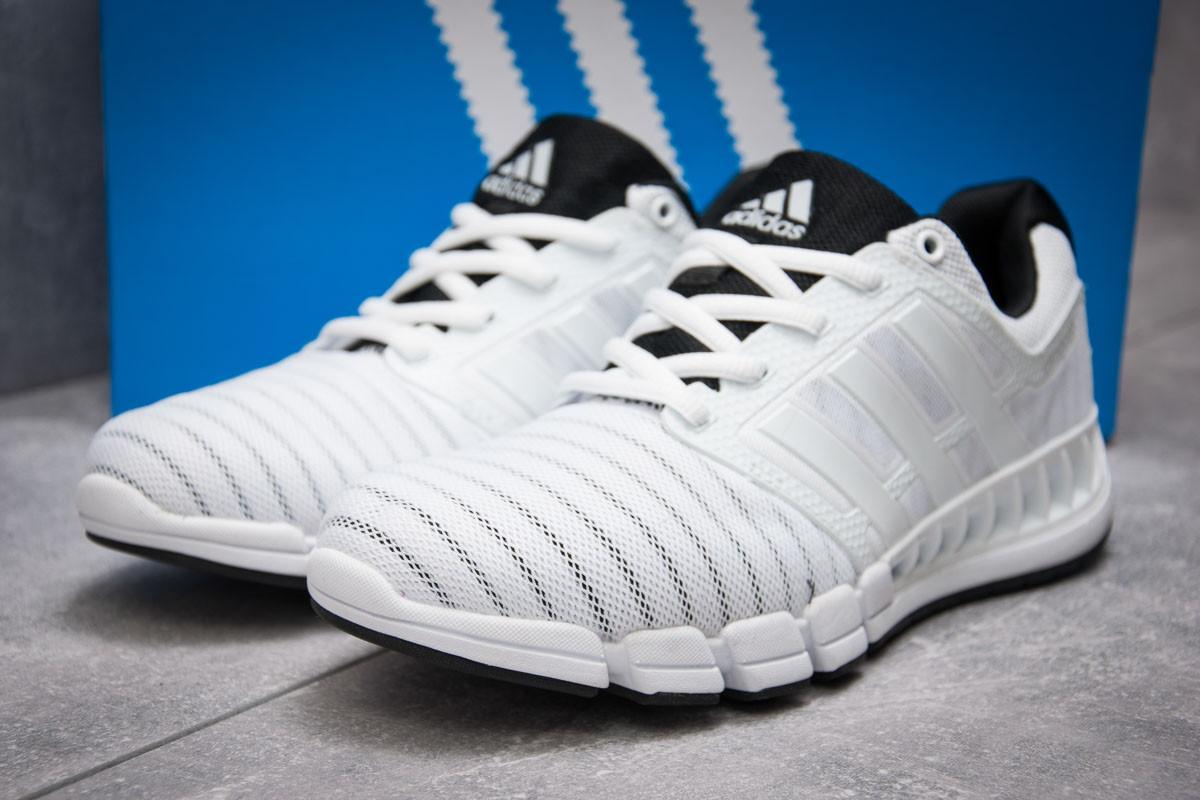 Кроссовки мужские Adidas Climacool, белые (13406), р. 41 - 45