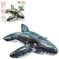 Плотик 57530 кит, 201-135 см, ручки 2 шт, рем. комплект, в кор-ке 26,5-24,5-9,5 см