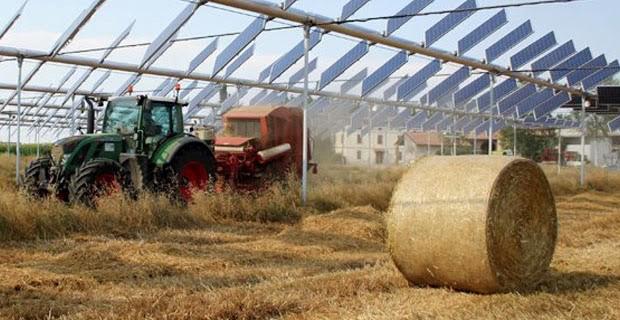 Агровольтаика как повысить урожайность с помощью солнечных панелей