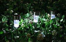 Садовый светодиодный светильник на солнечной батарее, фото 2