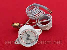 Термоманометр Hermann