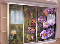 Шкаф-купе - фасады с наполнением стекло фотопечать под заказ, фото 1
