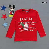 Кофта Italia для мальчика.  4 года, фото 1