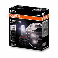 Лампи світлодіодні OSRAM H8/H11/H16 LEDriving FOG LAMP 66220CW (2шт)