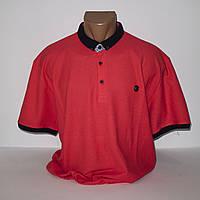 Чоловіча червона Супербатальная футболка лакоста пр-під Туреччина N7086G