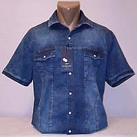 Рубашка джинсовая короткий рукав Redpolo р. XL, 2XL