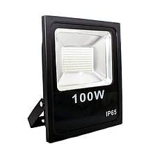 Прожектор светодиодный 100W 220V