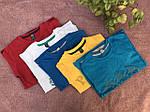 Детские костюмы на мальчиков футболка с шортами, фото 4