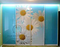 Раздвижные двери в шкаф купе. Фасады с наполнением, фото 1