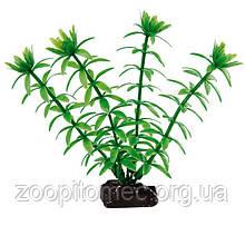 Рослина для акваріума Ferplast (Ферпласт) EGERIA Эгерия пластик BLU 9055, 10 см
