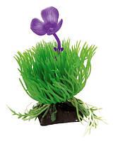 Растение для аквариума Ferplast (Ферпласт) Acorus Акорус пластик BLU 9056, 10 см