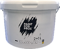 Краска для экрана проэктора на 10 м.кв. Paint For Pro's Beamer Paint