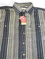 Вельветовая мужская рубашка (размеры 39.40.41.42.43.45)