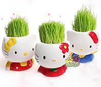 Травянчик Hello Kitty - принесет радость Вам, Вашим близким и конечно детям